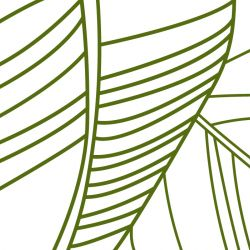 fronds silhouette striped palm olive white detail