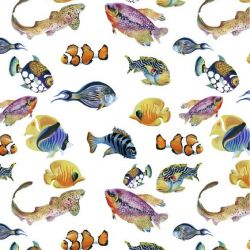 animalplanet ocean colours