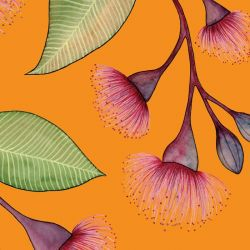 native waltz flowering gum mural tumeric