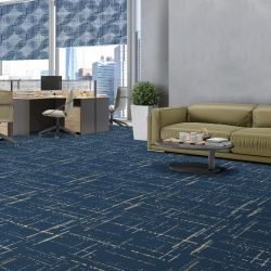 notions concept carpet and blinds