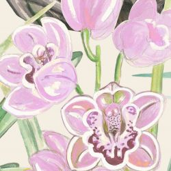 secret garden orchid allover fuchsia cream