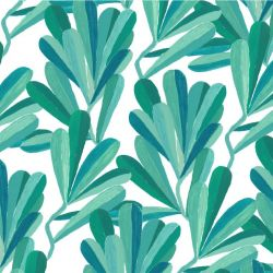 coastal banksia leaves teal