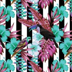 animalplanet toucan stripe vertical