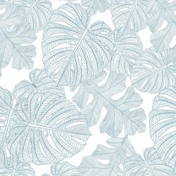 fronds silhouette monsteria mix cloud white