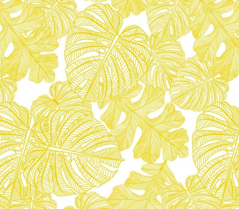 fronds silhouette monsteria mix mustard white white