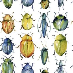 animalplanet bug army