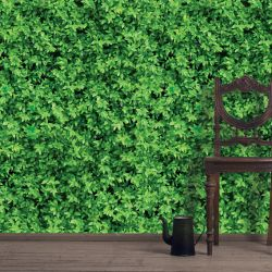 green walls leaf cover